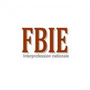 logo_FBIE